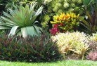Avon Plains Beach and coastal landscaping 8